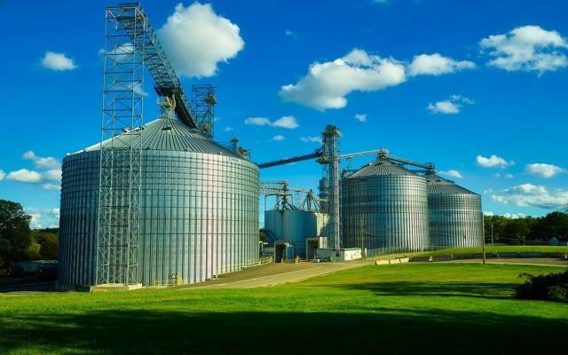 Зърнени и Маслодайни Култури: <br>Световно Производство и Крайни Запаси